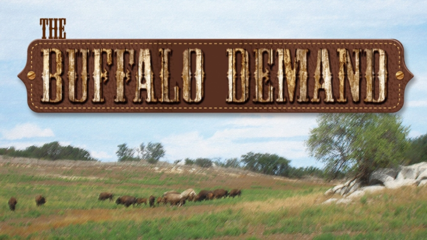 The Buffalo Demand