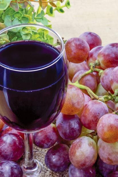 Organic Adult Beverages